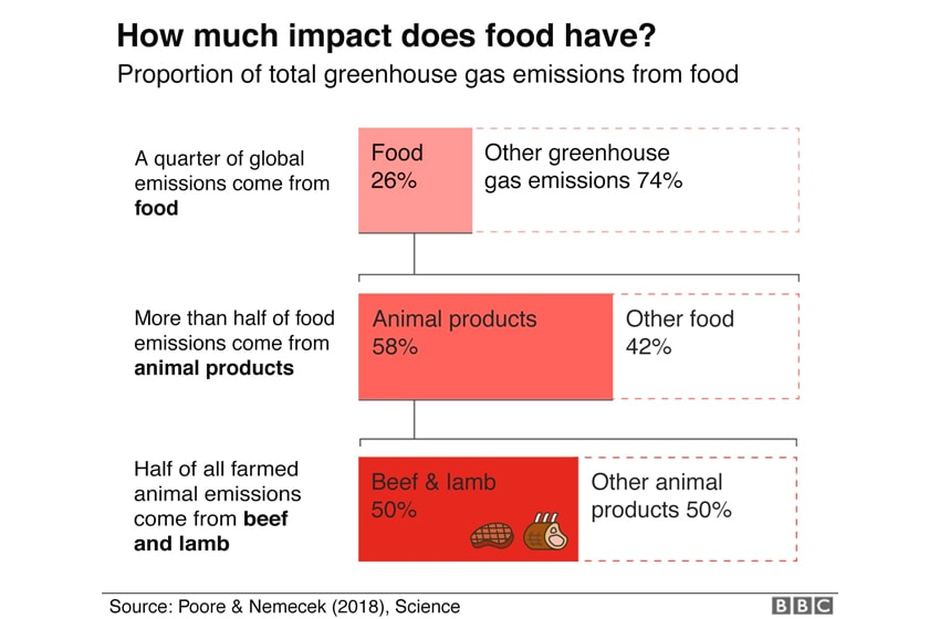 impact of food on environment, greenhouse gas emissions