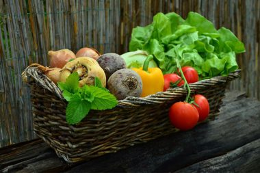 plant based diet to tackle climate change