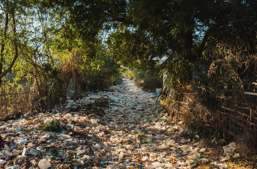 plastic bottle pollutes environment
